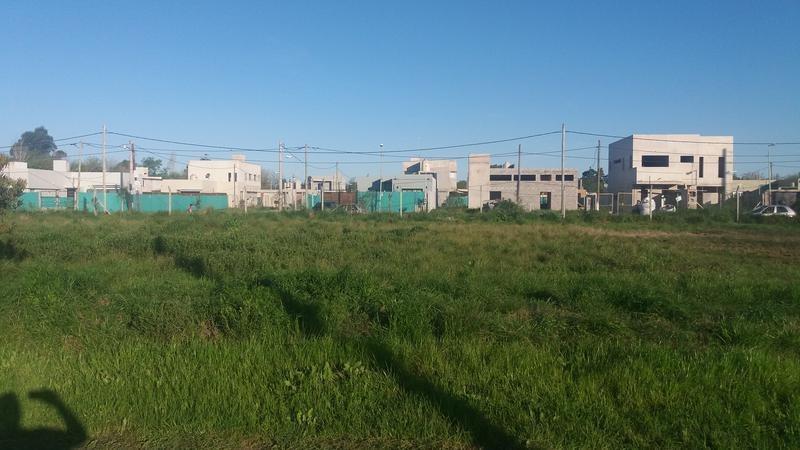 terreno en venta en 409/139 y 141 villa elisa - alberto dacal propiedades