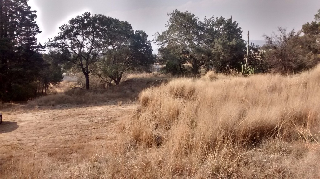 terreno en venta en acuitlapilco, tlaxcala