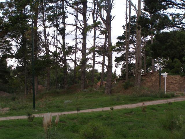 terreno en venta en alamos ii