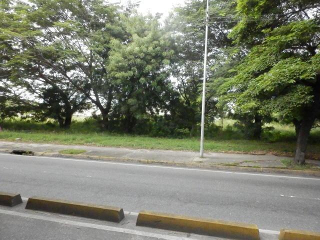 terreno en venta en avenida constitucion 19-16167 jev