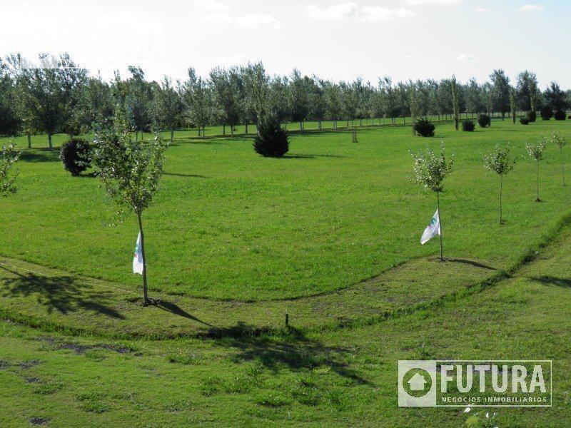 terreno en venta en barrio privado pinares del sur lote 15
