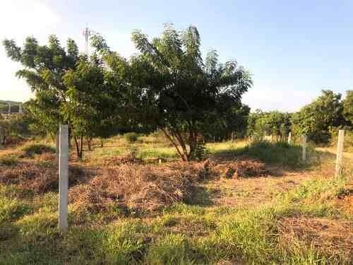 terreno en venta en brisas de zicatela, puerto escondido, oaxaca./land for sale in punta zicatela, p