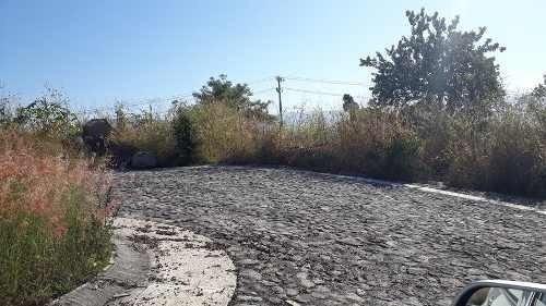 terreno en venta en burgos bugambilias. 481m2. l10