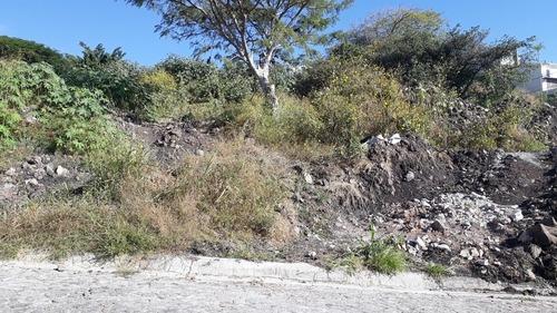 terreno en venta en burgos bugambilias. 733m2. l8