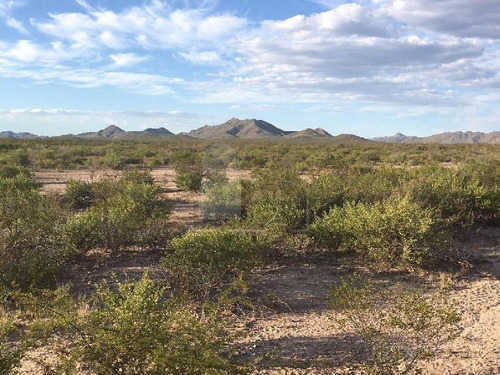 terreno en venta en camargo, campo el comanche