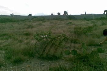 terreno en venta en campestre villas del norte, monterrey