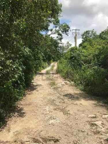 terreno en venta en cancun col. el pedregal superficie 300 mts , acceso por av. las torres