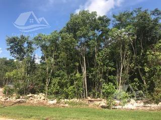 terreno en venta en cancun/arbolada