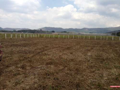 terreno en venta en carabobo montalbán (montalbán)