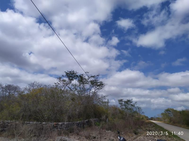 terreno en venta en carretera hunucma - sisal