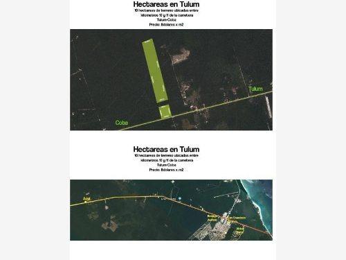 terreno en venta en carretera tulum-coba,  tulum