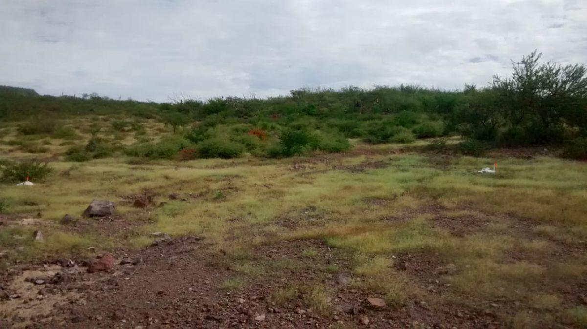 terreno en venta,  en cerro el bledal. peninsula sur. la paz, b.c.s.
