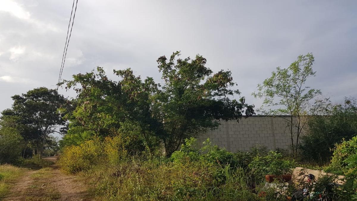 terreno en venta en chichi suarez merida yuc folio mtv-201
