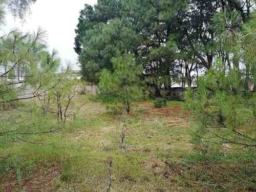 terreno en venta en colinas de san javier
