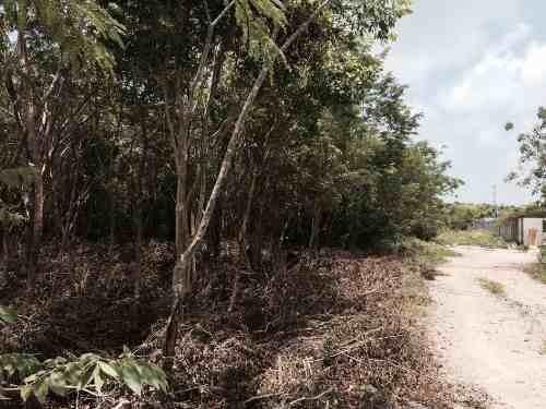 terreno en venta en colonia doctores cancún c1312