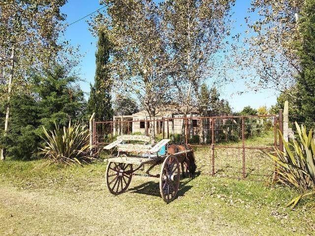 terreno en venta en domselaar oeste