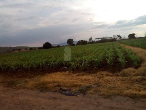 terreno en venta en  ejido arandas