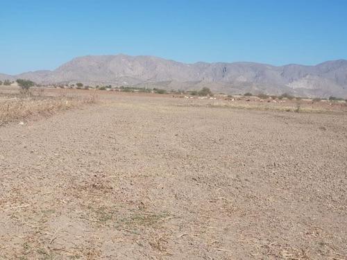 terreno en venta en el coyote