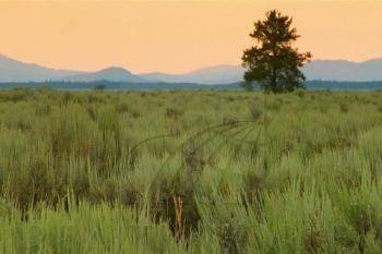 terreno en venta en el fraile, monterrey