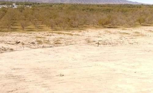 terreno en venta en fraccionamiento parvada en parras de la fuente