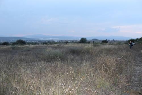 terreno en venta en guanajuato (apaseo el grande)