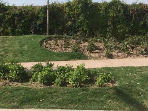 terreno en venta en hacienda san jose en torreon