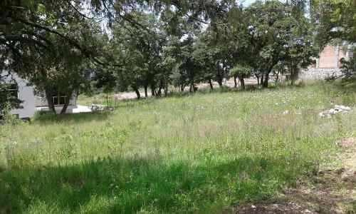 terreno en venta en haras del bosque opt-0157