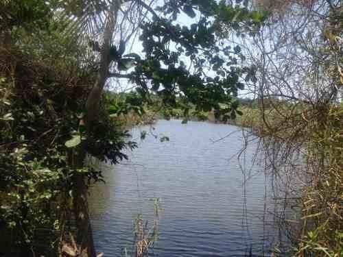 terreno en venta en inmediaciones de la laguna de 3 palos.