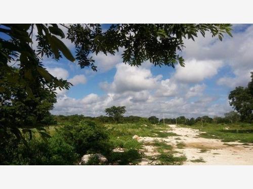 terreno en venta en izamal