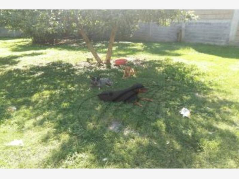 terreno en venta en jardines de la silla