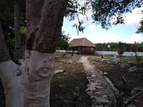 terreno en venta en km 6 carretera libre a cancun