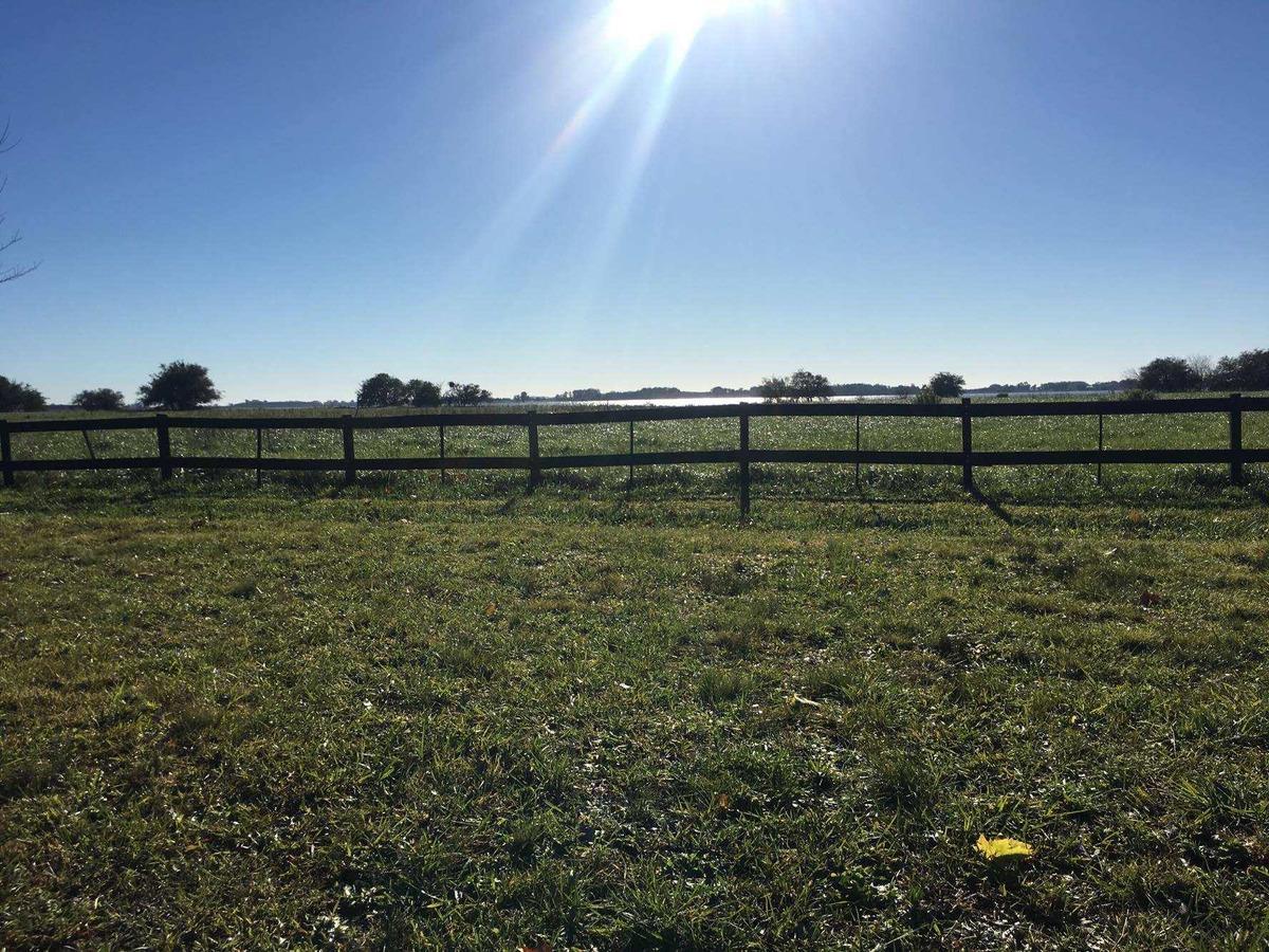 terreno en venta en laguna vitel