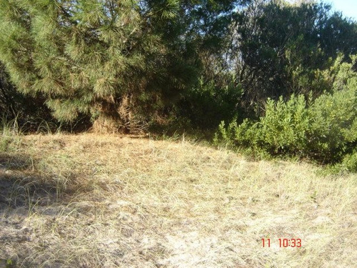 terreno en venta en las gaviotas