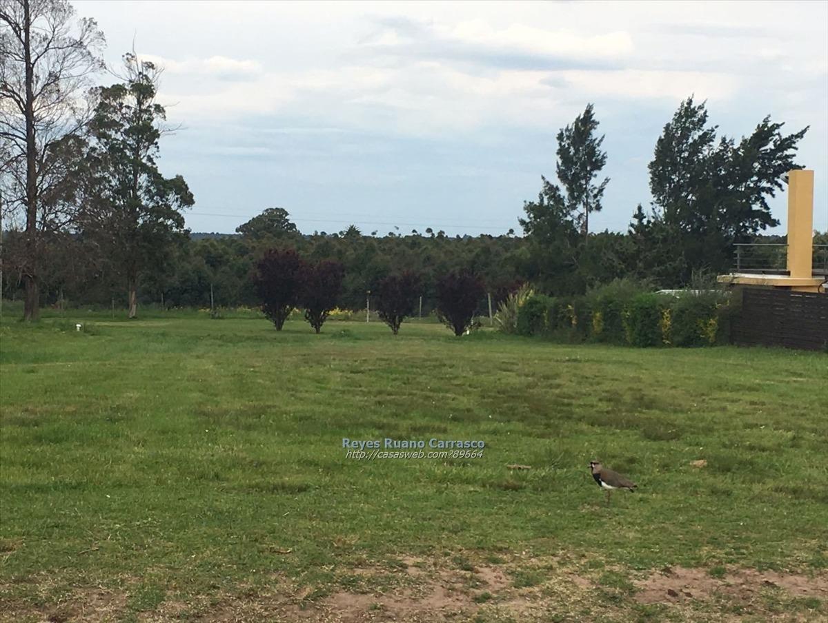 terreno en venta en lomas de la tahona - barrio privado