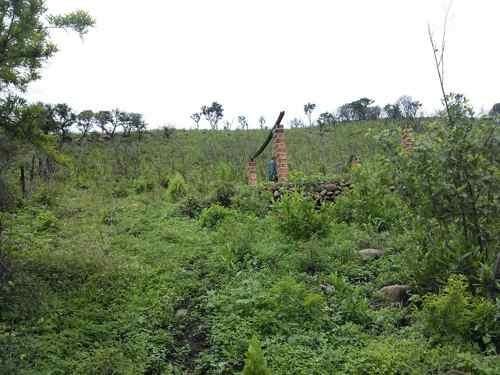 terreno en venta en lomas de tejeda tlajomulco de zúñiga