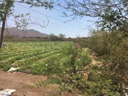 terreno en venta en los mezcales, carret. manzanillo-colima