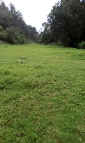terreno en venta en los saúcos