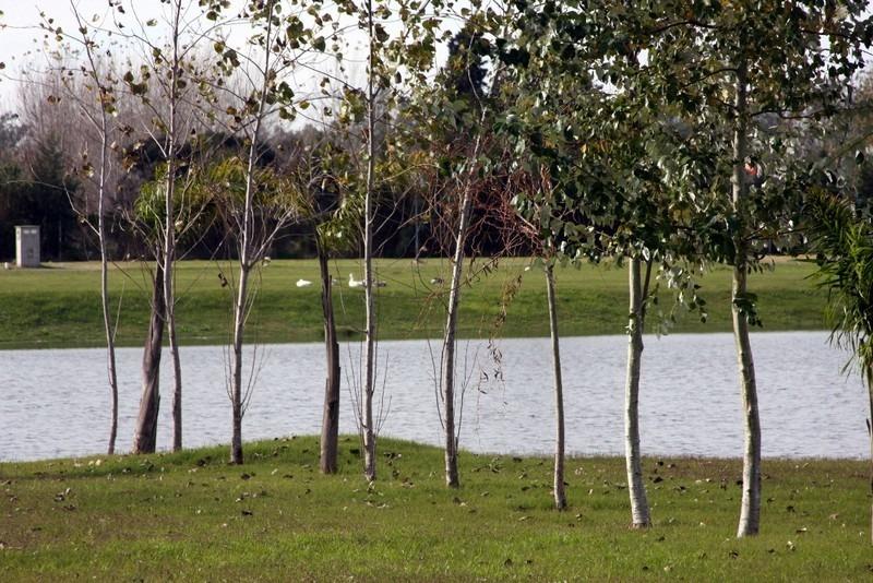 terreno en venta en los troncos