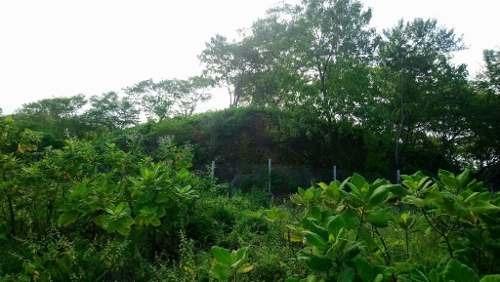 terreno en venta en mazunte, oaxaca