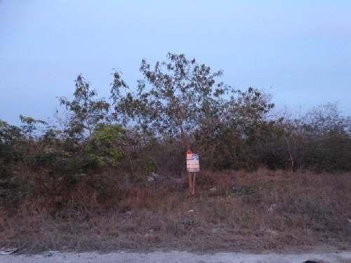 terreno en venta en mérida / dzitya  en esquina de 9364 mts.