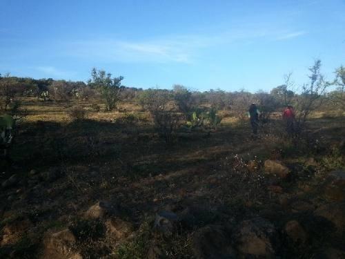 terreno en venta en mesa colorada oriente zapopan