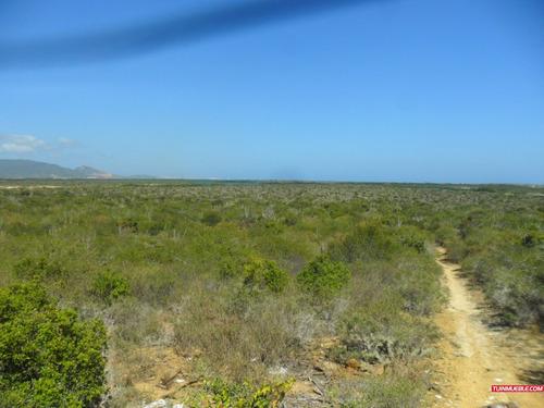 terreno en venta en nueva esparta - margarita (suroeste)