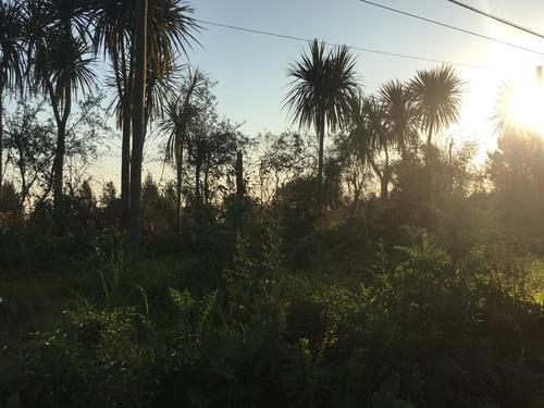 terreno en venta en orzali