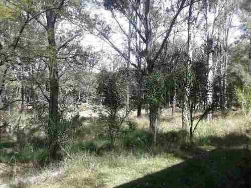 terreno en venta en pinar de la venta zapopan