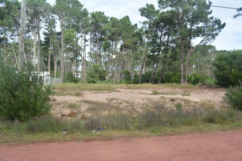terreno en venta en pinares