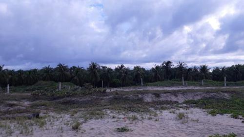 terreno en venta en playa el tomatal,  20 minutos de puerto escondido, oaxaca.