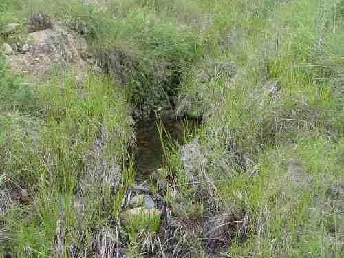terreno en venta en predio rústico el taray zapopan