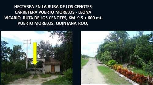 terreno en venta en puerto morelos -ruta de los cenotes