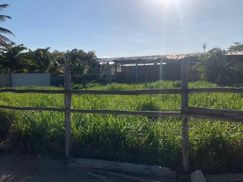 terreno  en venta en puerto progreso, yucatán