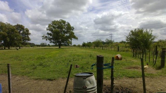 terreno en venta en quinta don ramirez